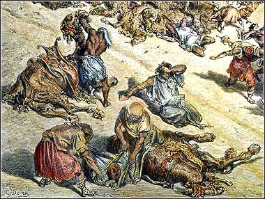 Fifth Plague of Egypt, Bible Exodus 9, Moses