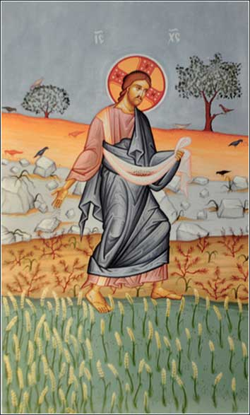 Jesus the Sower parable