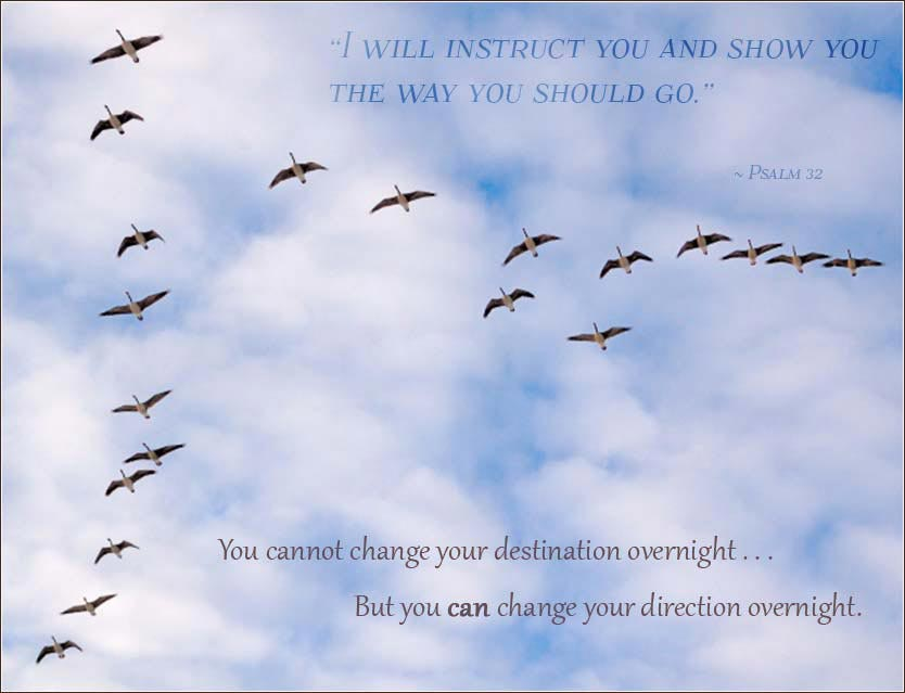 You cannot change your destination overnight, but you can change your direction.