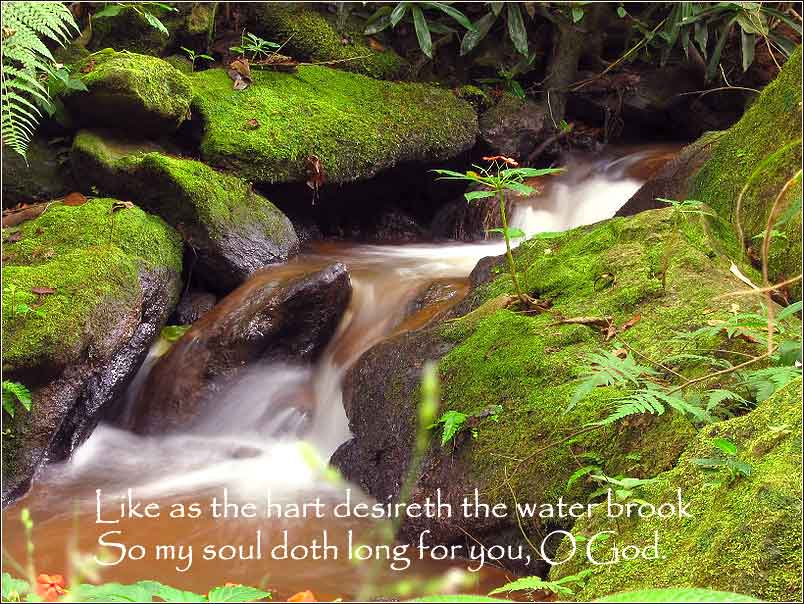 Psalm 42 quote with photograph of a pretty waterfall